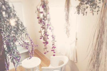 植物オイルの持つ抗紫外線力と最も高い植物は?